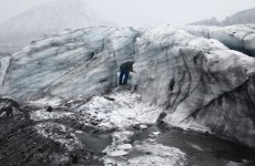 Crédit image : Copyright The Glacier Study Group, 2013, Institute of Critical Zoologists